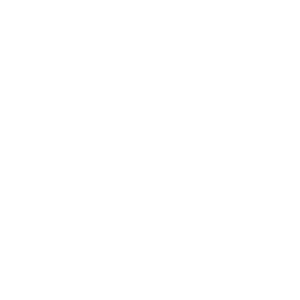 County Seal of SBCMS